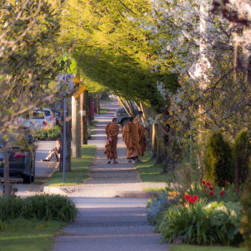 monks strolling