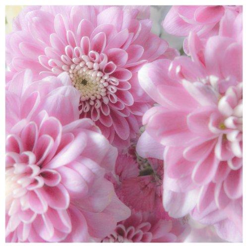 july flowers-1