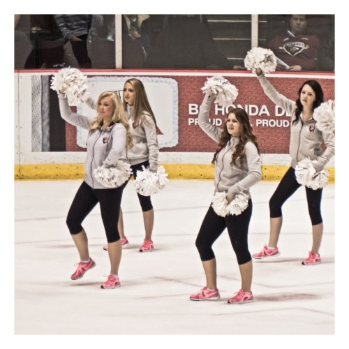 hockey 6