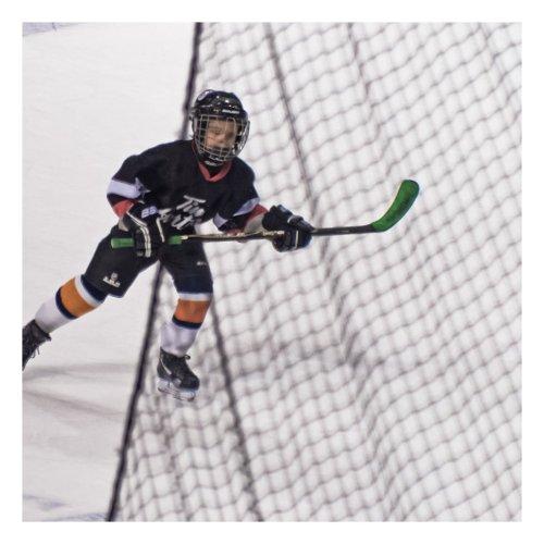 hockey petits 1