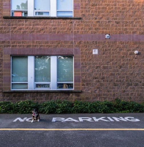 max no parking