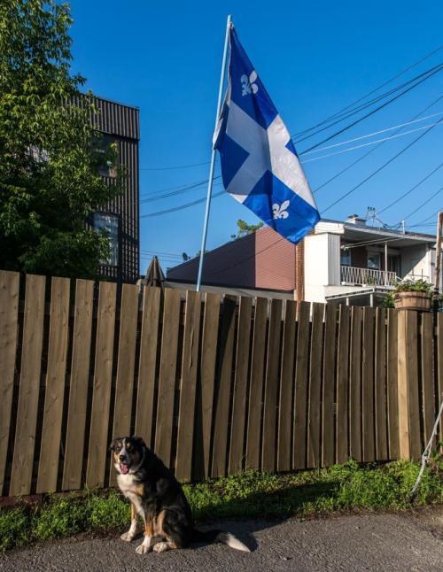 max et le drapeau