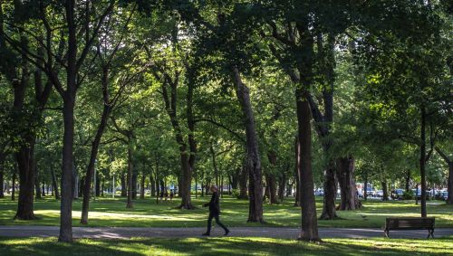 une balade dans le parc