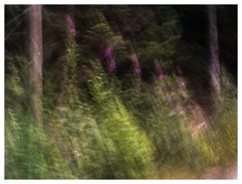 Whistler 18
