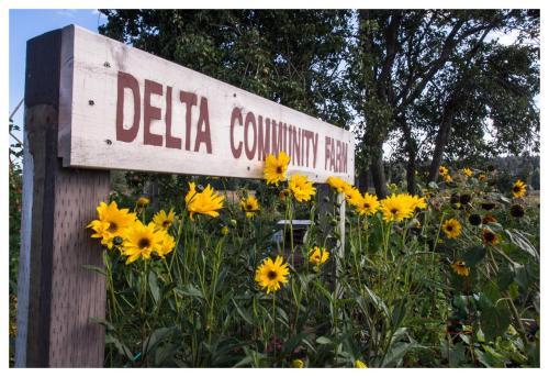 delta-community-farm-01
