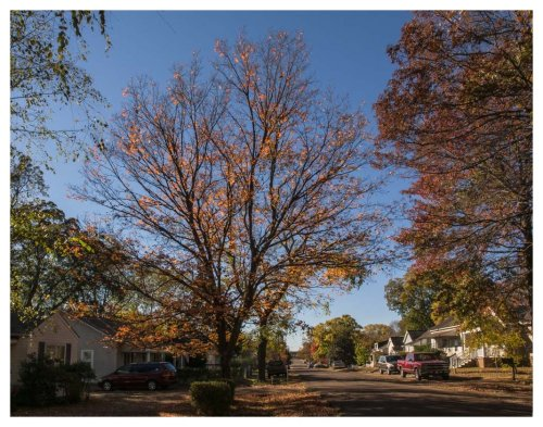 automne-huntsville-2016-11-19-2