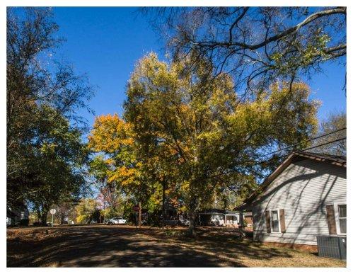automne-huntsville-2016-11-19-3