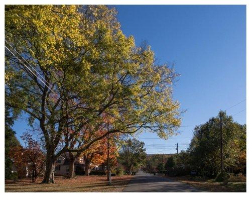 automne-huntsville-2016-11-21-5